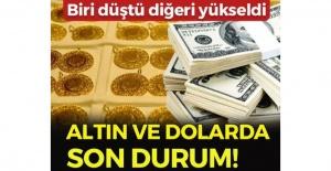 Altın fiyatları yükseldi, dolar düştü