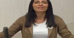 CHP'li kadın vekil TBMM kürsüsünde türkü söyledi